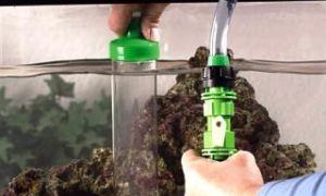 Очистка грунта в аквариуме